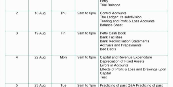 Double Entry Accounting Spreadsheet Trust Account Reconciliation Intended For Accounting Equation Spreadsheet