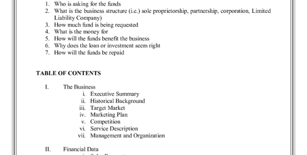 Download Sample Of Financial Plan For Small Business | Papillon Northwan Throughout Financial Plan Template Free