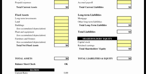Excel Spreadsheet For Accounting Of Small Business Inspirational 4 In Spreadsheet For Accounting Spreadsheet For Accounting Spreadsheet Software
