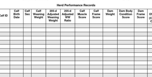 Farm Record Keeping Spreadsheets | Yoga Spreadsheet For Farm Record Within Farm Record Keeping Spreadsheets