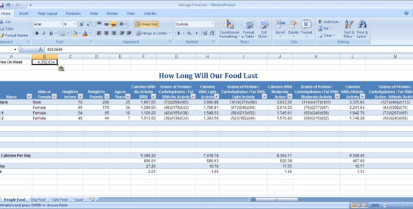 Food Pantry Inventory Spreadsheet Spreadsheet Software Inventory Within Food Pantry Inventory Spreadsheet
