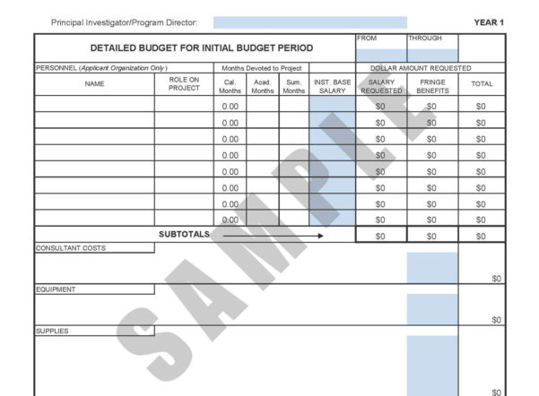 Forms Within Budget Template Sample