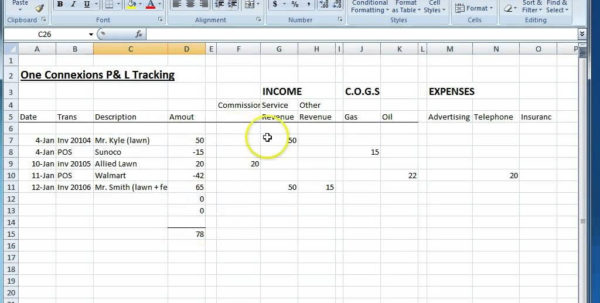Llc Accounting Spreadsheet On Spreadsheet Software Sample Excel With Accounting Spreadsheet Software