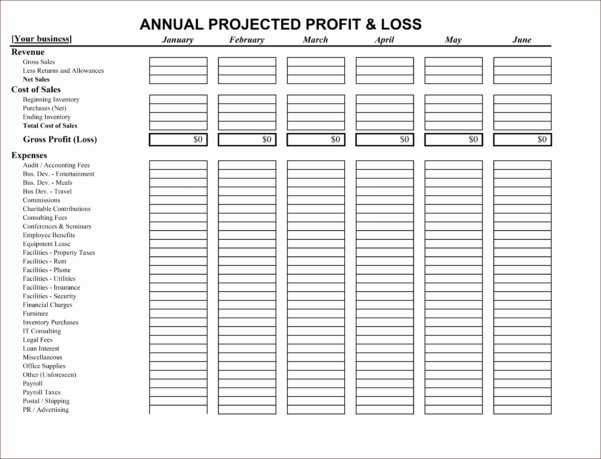 Small Business Profit And Loss Statement Template New Small Business Within Business Profit And Loss Spreadsheet