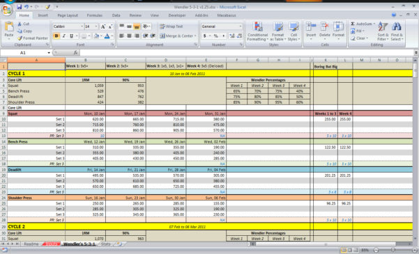 Download spreadsheet spreadsheet softwar download for Bodybuilding excel template