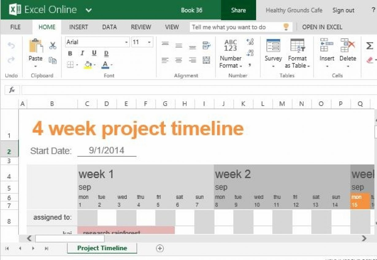 Timeline Project Template Plan Graceful – Amaschietto For School Project Timeline Templates
