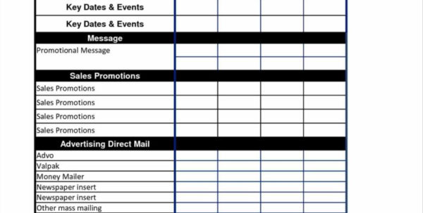 Advertising Spreadsheet Inside Schedule Worksheet Templates And Promotional Plan Template Action