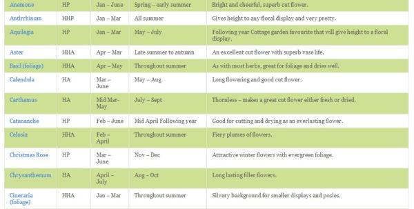 Allotment Growing Calendar Spreadsheet Inside Cut Flower Wall Chart And Growing Guide  Suttons Gardening Grow How