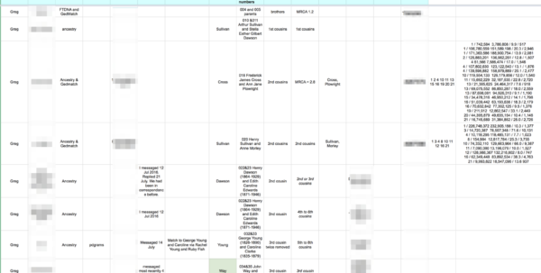 Ancestry Dna Spreadsheet For Dna Testing Results One Year On  Anne's Family History