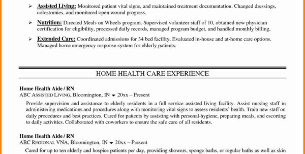 Assisted Living Budget Spreadsheet In Nursing Home Care Plans Health Pdf Saludencuba Com Example Of Budget