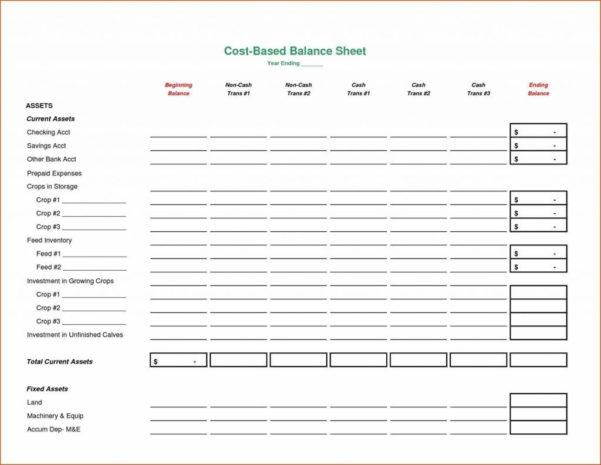 Balance Spreadsheet With 009 Template Ideas Balance Sheet Xls Google Spreadsheet Excel
