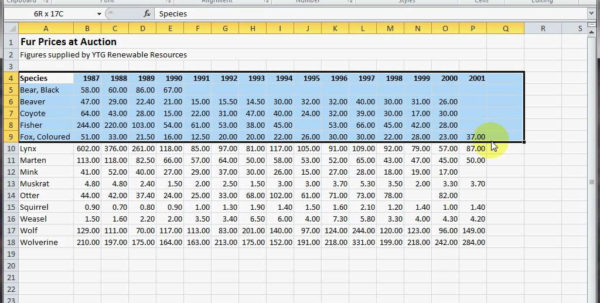 Barrel Racing Excel Spreadsheet Throughout Practice Excel Spreadsheet Sheets For Best Practices In Worksheet
