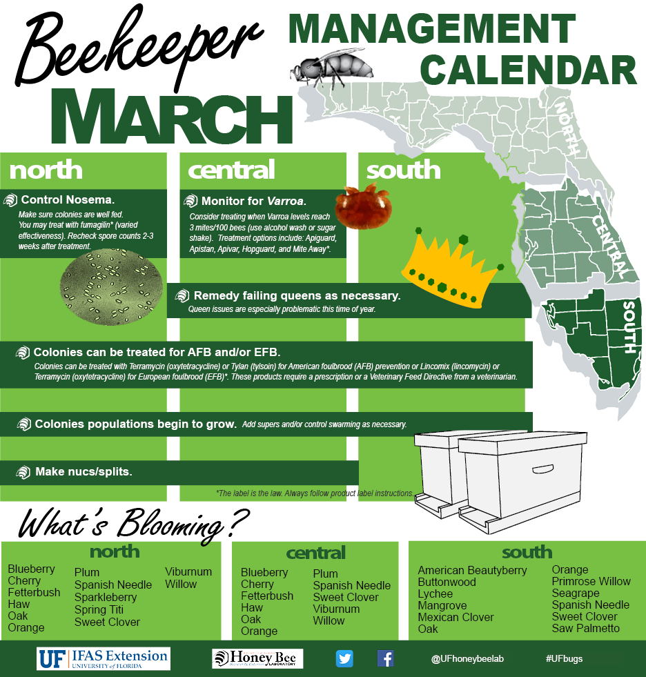 Beekeeping Spreadsheet Pertaining To Beekeepers Association Of Southwest Florida  Home Page
