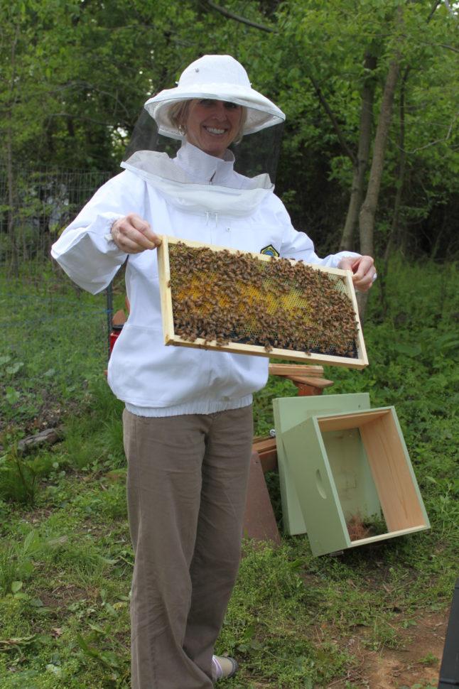 Beekeeping Spreadsheet Throughout Kurtz Acres Visitors  Kurtz Acres