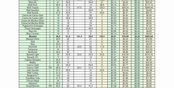 Beverage Cost Spreadsheet In Liquor Cost Spreadsheet Excel Lovely Awesome Bartory Of Example
