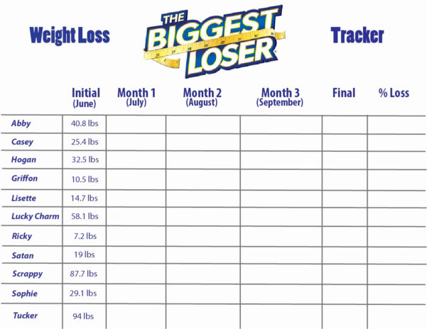 Biggest Loser Excel Spreadsheet Within Biggest Loser Calculator Fresh Biggest Loser Excel Spreadsheet And