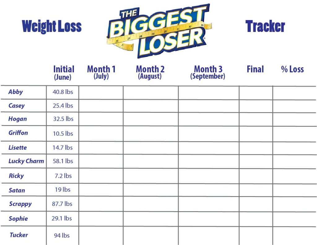 Biggest Loser Spreadsheet With Spreadsheet Biggest Loser Weight Loss Chart 8502 Excel Selo L Ink Co