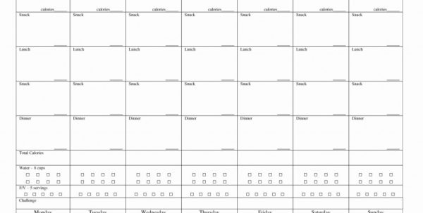 Biggest Loser Weight Loss Calculator Spreadsheet Inside Biggest Loser Weight Loss Calculator Spreadsheet Beautiful Downtime