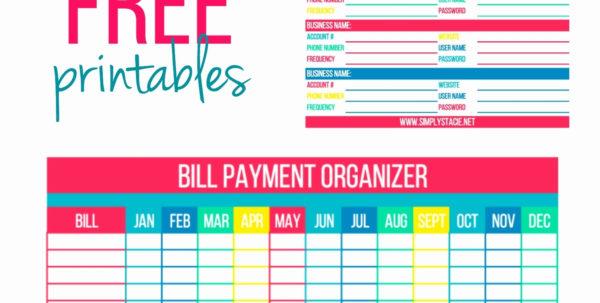 Bill Organizer Spreadsheet For Printable Bill Organizer Spreadsheet Awesome Monthly Bills Organizer