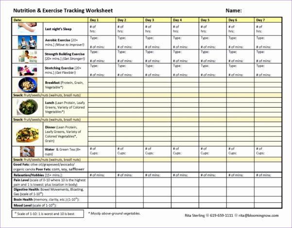 Bitconnect Spreadsheet Excel Regarding Bitconnect Spreadsheet Download Fresh Diet Excel Spreadsheet Weight