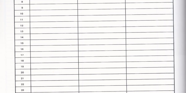 blank spreadsheet within blank spread sheet create google