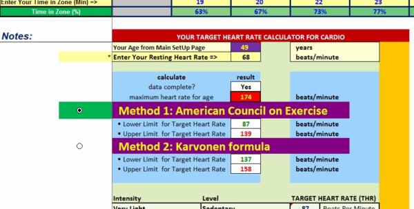 Body Beast Meal Plan Spreadsheet For Body Beast Meal Plan Spreadsheet Examples Template Example Worksheet