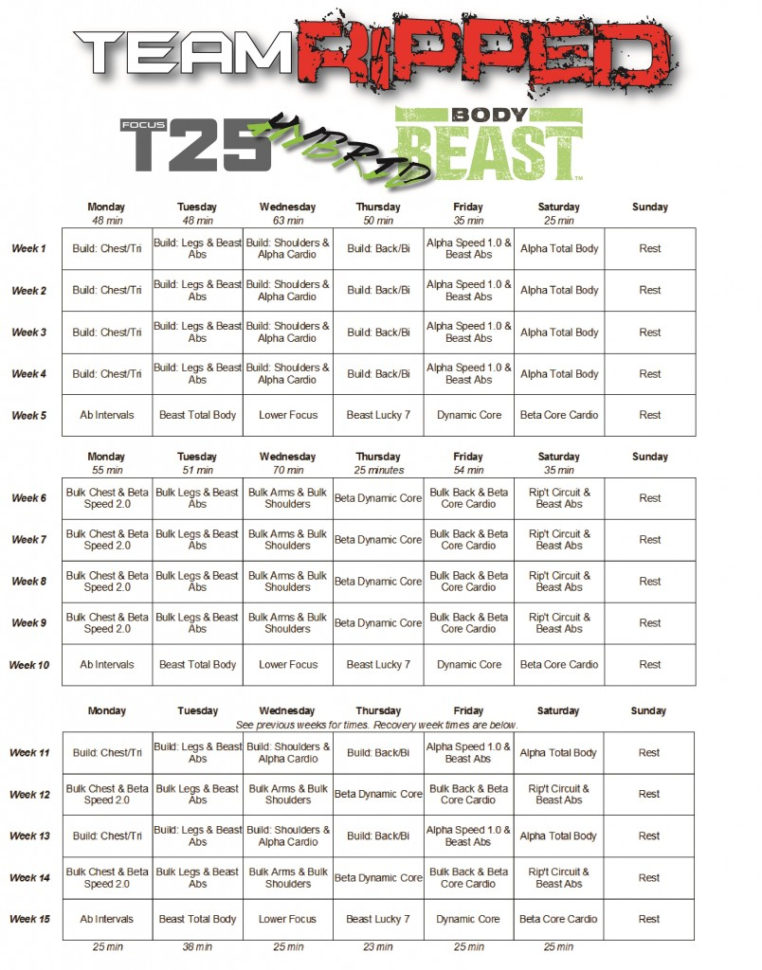 Body Beast Meal Plan Spreadsheet Pertaining To My Hybrid Worksheets / Calendars  Teamripped