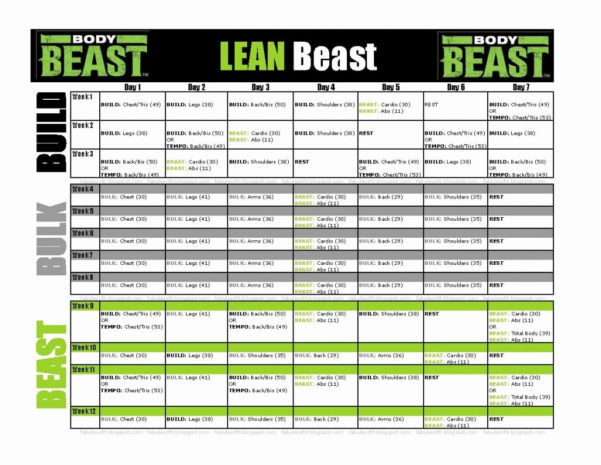 Body Beast Meal Plan Spreadsheet Throughout Body Beast Meal Plan Spreadsheet Excel Workout Tool  Pywrapper