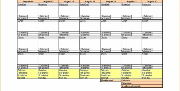 Bodybuilding Meal Plan Excel Spreadsheet With Regard To 014 Mealning Template Excel Free ~ Tinypetition Bodybuilding Meal Plan Excel Spreadsheet Payment Spreadsheet