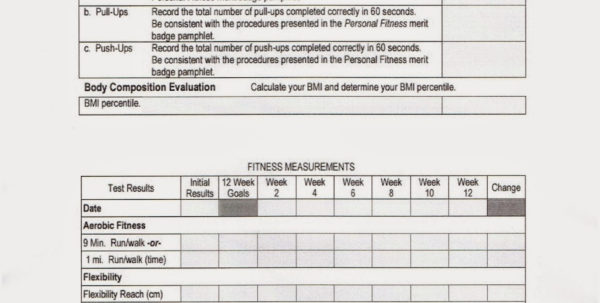 Boy Scout Merit Badge Tracking Spreadsheet Pertaining To Boy Scout Merit Badge Tracking Spreadsheet For Spreadsheet Templates