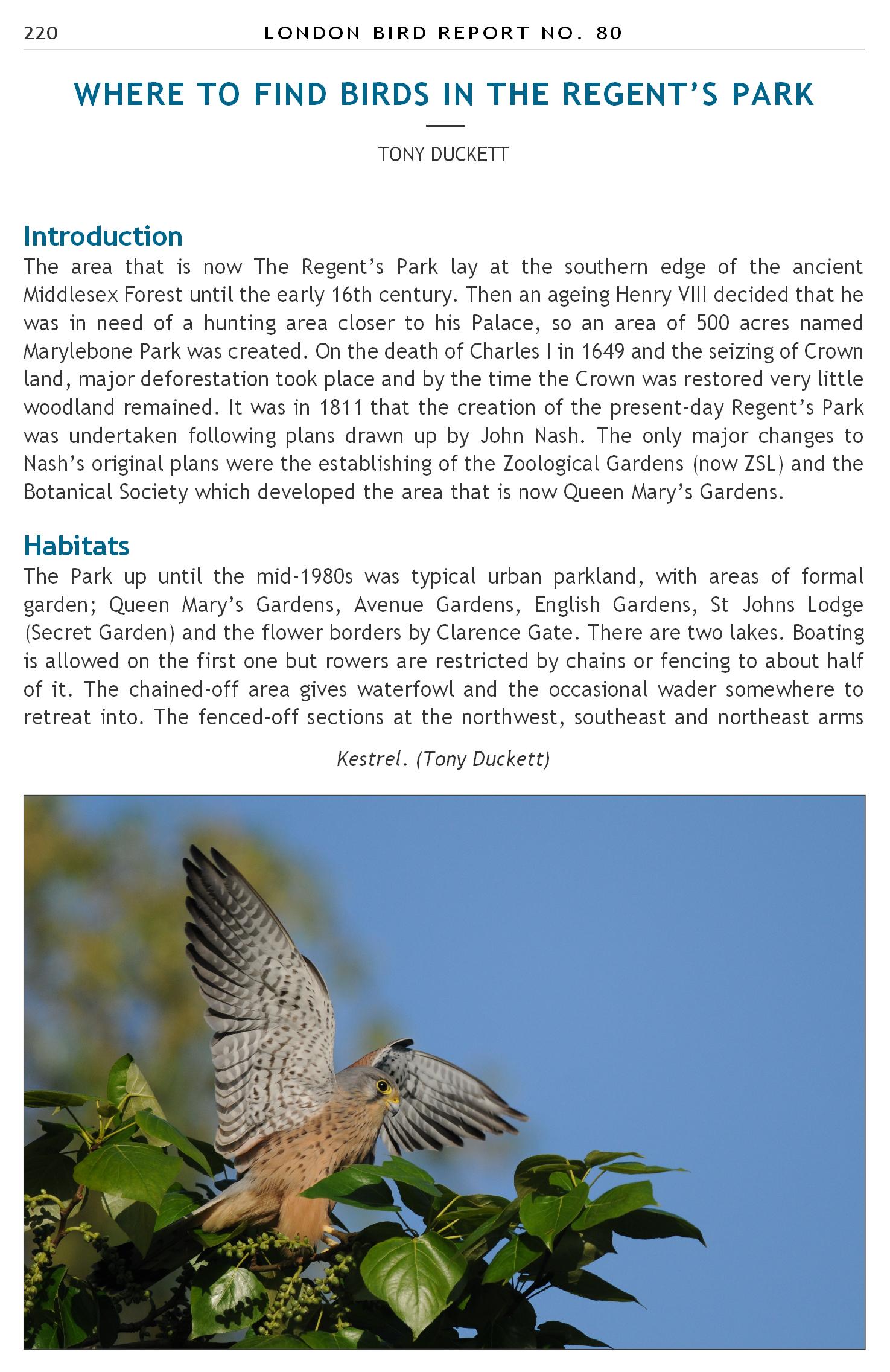 British Bird List Spreadsheet Within London Natural History Society  Home