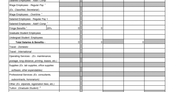 Budget Spreadsheet Examples Within Example Of Project Budget Spreadsheet Sample Management 40270Late