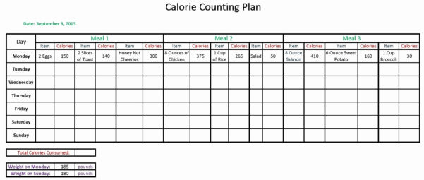 Calorie Counter Excel Spreadsheet Free Download Intended For Calorie Counting Spreadsheet On How To Make A Spreadsheet Excel