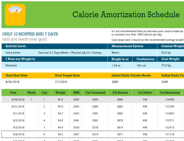 Calorie Intake Spreadsheet Throughout Calorie Amortization Schedule