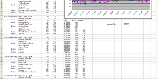 Calorie Spreadsheet Template Intended For The Diet Spreadsheet By Jeremy Zawodny