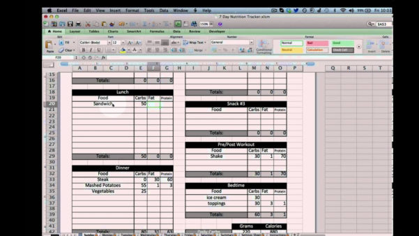 Calorie Tracker Spreadsheet For Diet Excel Spreadsheet Nutrition Tracking Template Youtube Macro
