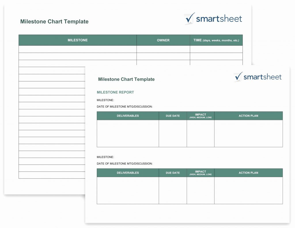Candidate Tracking Spreadsheet Template For Applicant Tracking Spreadsheet Candidate Template Free Affirmative