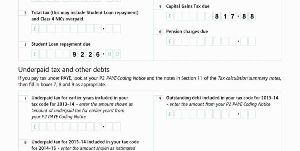 Capital Gains Tax Spreadsheet Shares Within 2013 Tax Worksheet Spreadsheet Template Computation Worksheet—Line