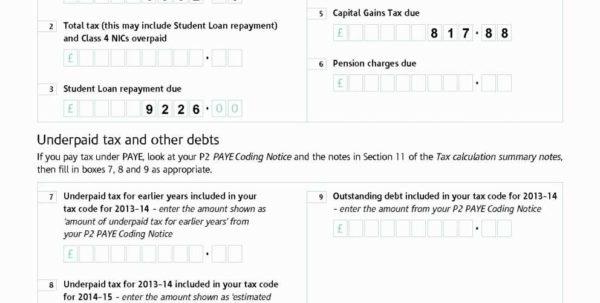 Capital Gains Tax Spreadsheet Shares Within 2013 Tax Worksheet Spreadsheet Template Computation Worksheet—Line