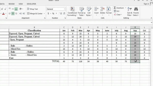 Cattle Budget Spreadsheet Pertaining To Cattle Budget Spreadsheet Budgetdsheet Beautiful New Cow Calf
