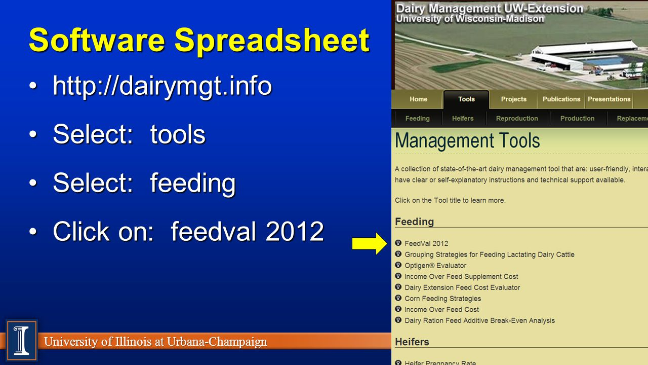 Cattle Ration Spreadsheet In Take Home Message #2 Shredlage  Forage Form  Ppt Video Online Download