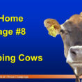 Cattle Ration Spreadsheet With Take Home Message #2 Shredlage  Forage Form  Ppt Video Online Download