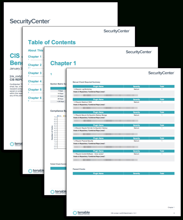Cis Benchmark Excel Spreadsheet For Cis Junos Benchmark Reports  Sc Report Template  Tenable®