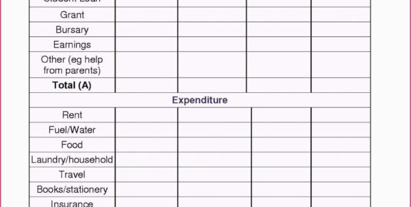 College Student Expenses Spreadsheet Within Student Budget Spreadsheet Template College Excel Loan Example