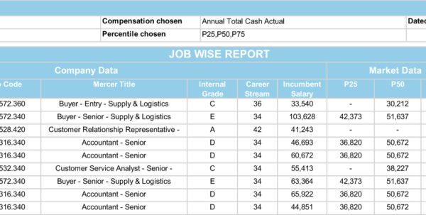 Compensation Analysis Spreadsheet In Compensation Analysis And Review Services Cars