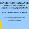 Cost Benefit Analysis Financial And Economic Appraisal Using Spreadsheets With Regard To Efficiency Benefitcost Analysis
