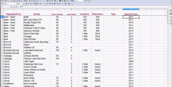Create Inventory Spreadsheet With Inventory Spreadsheets How To Make An Excel Spreadsheet Spreadsheet
