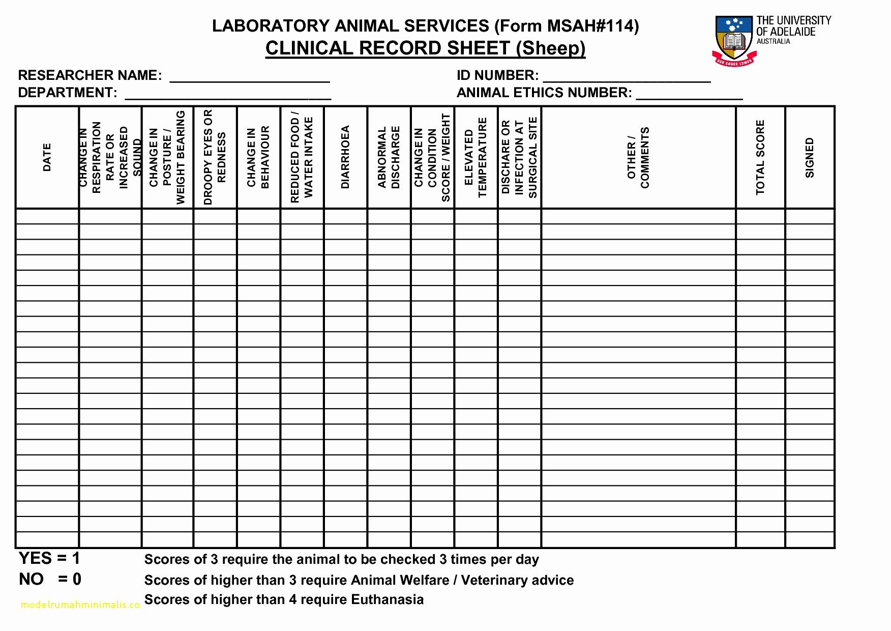 Creating A Budget Spreadsheet Regarding Free Cattle Inventory Spreadsheet  Daykem