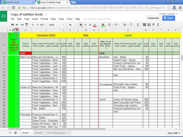 Daily Calories & Food Nutrition Excel Spreadsheet Calculator With Diabetes Excel Template  Kasare.annafora.co