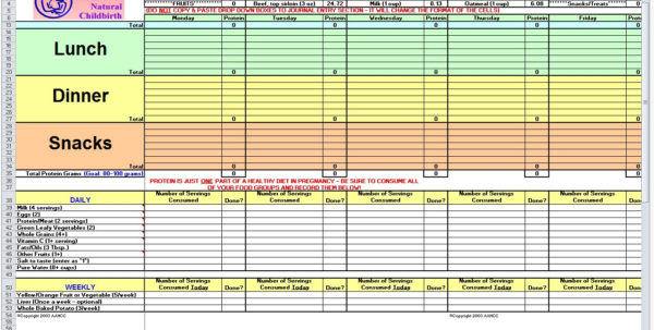 Daily Calories & Food Nutrition Excel Spreadsheet Calculator With Regard To Diet Excel Sheet  Alex.annafora.co Daily Calories & Food Nutrition Excel Spreadsheet Calculator Google Spreadsheet